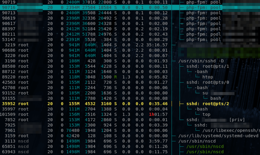 htop pid check