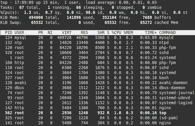 LEMP raspberry pi - Top Stats