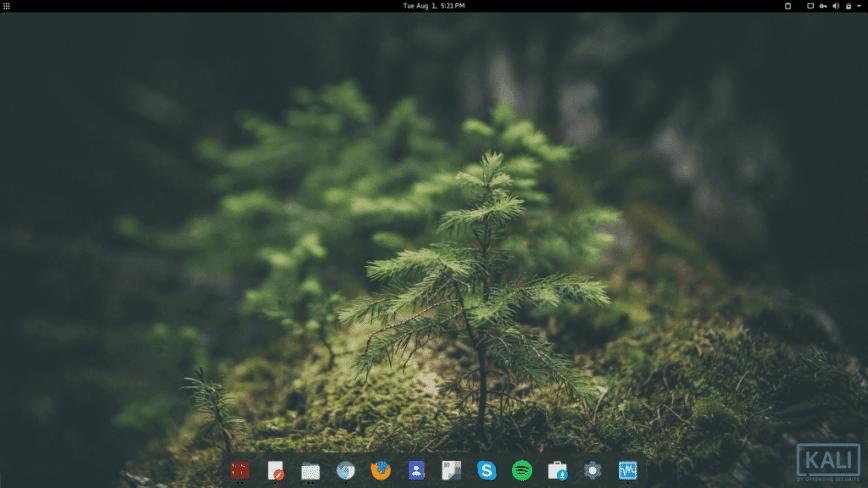 Kali Linux + Gnome everyday distro
