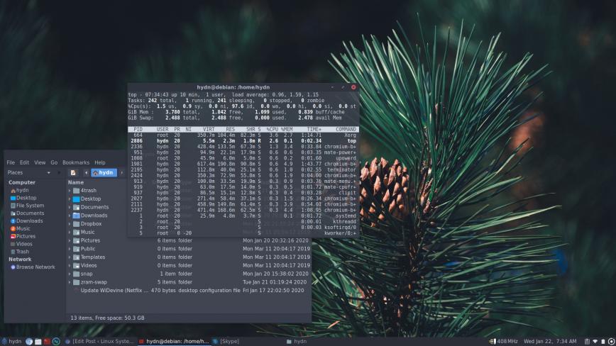 Pinebook Pro desktop screenshot