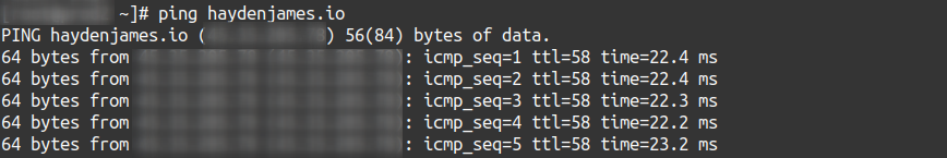 ping example