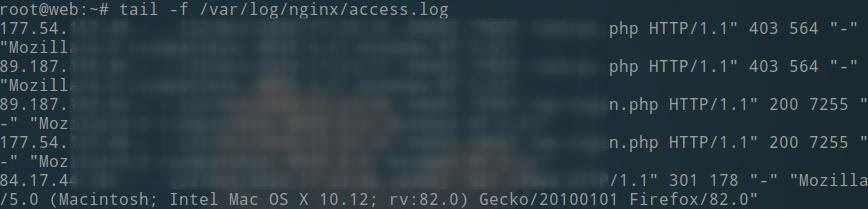 tail nginx access log