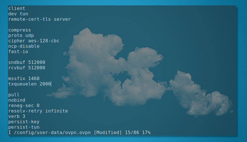 my openvpn config: /config/user-data/ovpn.ovpn